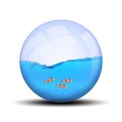 Poisson dans bulle B