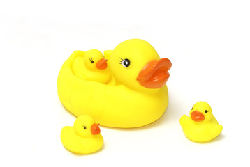 Bath toy, Rubber duck family