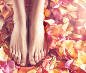 Spa compositions of sexy female legs and fallen petals
