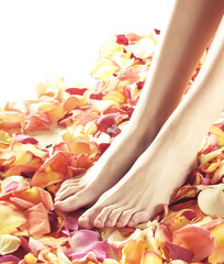 Beautiful female legs with colorful flower petals