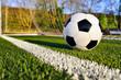 canvas print picture - Fußball liegt hinter der Torlinie