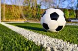 Fototapety Fußball liegt hinter der Torlinie