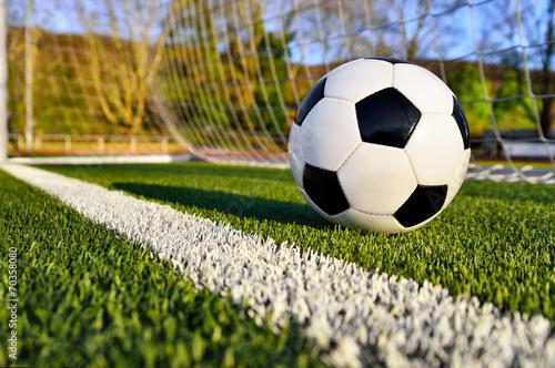 canvas print picture Fußball liegt hinter der Torlinie