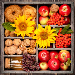 Autumn. Red apples, honey, nuts and sunflower in wooden box