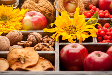 Autumn composition. Red apples, nuts and sunflower in wooden box