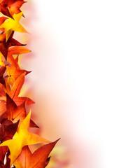 Verzierung aus Herbstblättern