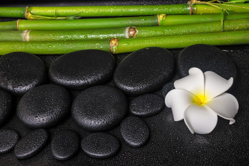 spa concept of zen basalt stones, white flower plumeria and natu