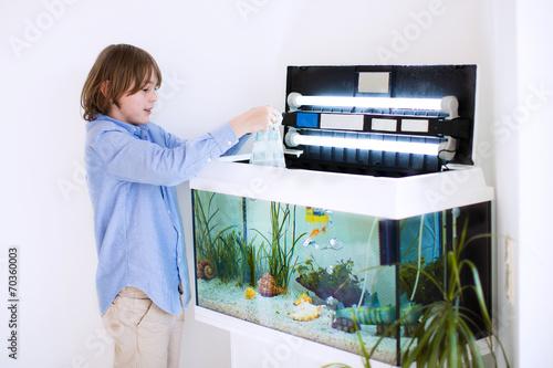 Child putting new fish in an aquarium - 70360003