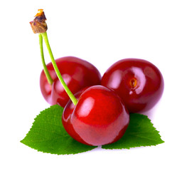 Ripe cherry isolated.