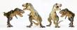 A Tyrannosaurus Quartet on a White Background