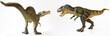 A T-rex Battles a Spinosaurus on White
