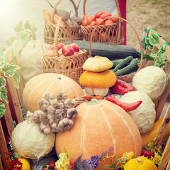 Harvested vegetables and fruits  in wooden cart
