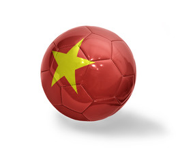Vietnamese Football