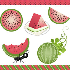 Watermelon Digital Clipart
