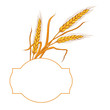 Wheat ear card.