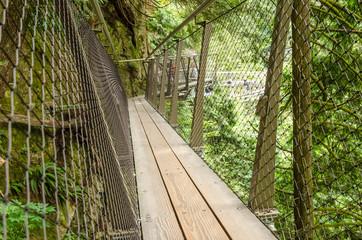 Narrow Wooden Cantilever Bridge