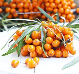 Seabuckthorn Berries