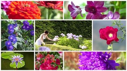 wonderful flowers and romantic young woman collage