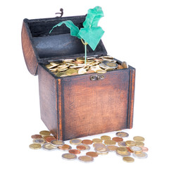 Wooden money chest filled with coins and a money tree