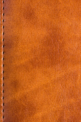 Skin book cover texture