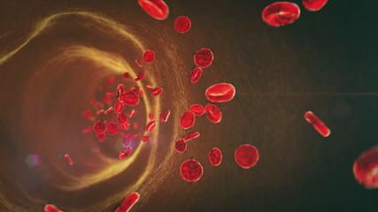 Ebola, erythrocytes
