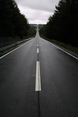 道 進路 方向