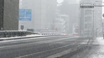 東京大雪(2014年2月8日 20年ぶりの大雪)006 西新宿