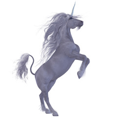Unicorn over White
