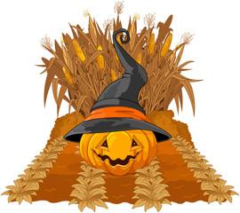 Pumpkin on corn maze