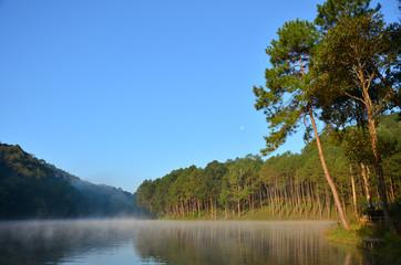 Nature park at Pang Ung,Thailand