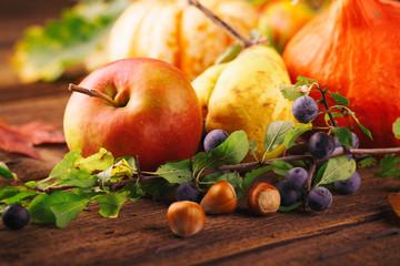Herbst - Früchte und Gemüse - Stillleben