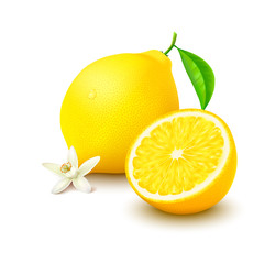 Lemon with half and flower on white background