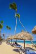 Leinwanddruck Bild - Palm tree umbrella and sunbeds on Caribbean beach