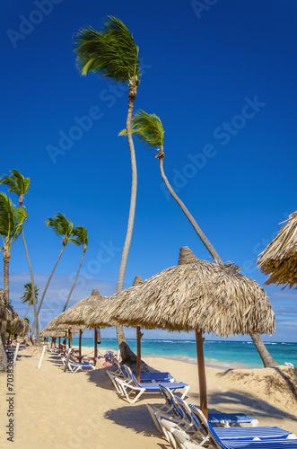 Leinwanddruck Bild Palm tree umbrella and sunbeds on Caribbean beach