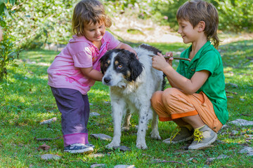 two kids - boy and girl - with dog outdoors