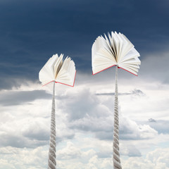 books tied on ropes soars into rainy sky