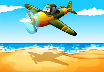 An aircraft at the beach
