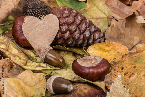 canvas print picture heart on autumn background