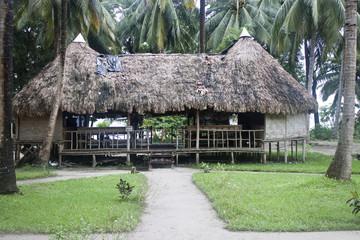 Hut at tropical resort, Havelock, Andaman islands, India.