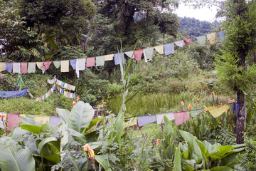Buddhist flags near sacred lake in Sikkim, India
