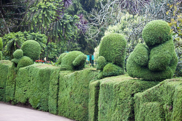 Animal shaped bushs in botanical garden in Ooty, India