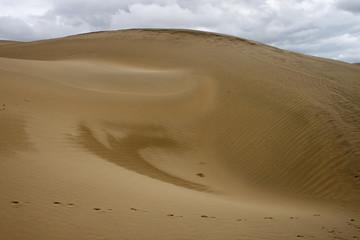 Sand dune at Thar desert in Rajasthan, India