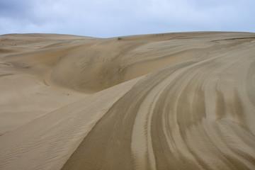 Sand dunes at Thar desert in Rajasthan, India