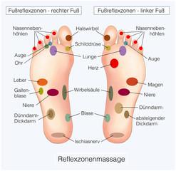 Fussreflexzonen.Reflexzonenmassage.Organe