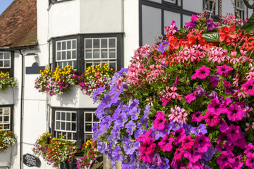 blossoming flowers and old houses, Henley on Thames