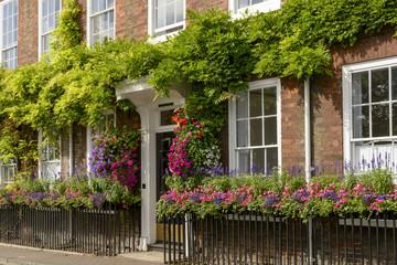 flowers on bricks facade, Henley on Thames