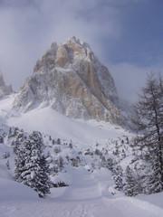 Nevicata sotto al Sassolungo