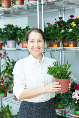 florist with Crassula at  store
