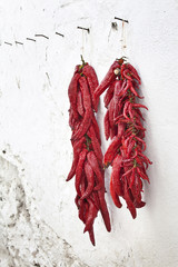 pimientos rojos secos colgados en la pared blanca.