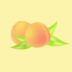 apricot background